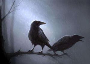 corbeau1