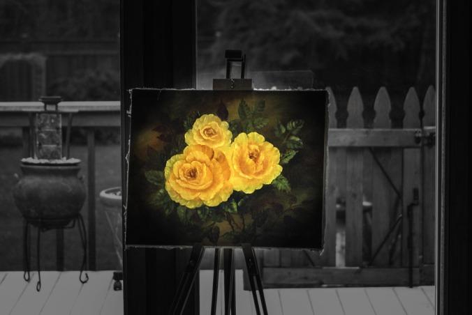 rose-970711_960_720
