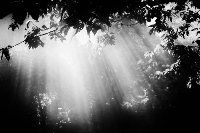 rayons-de-soleil