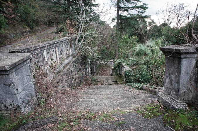vieux-jardin-abandonné-88006290