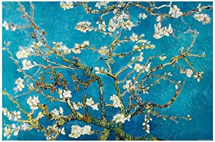 branche d'amandier en fleurs