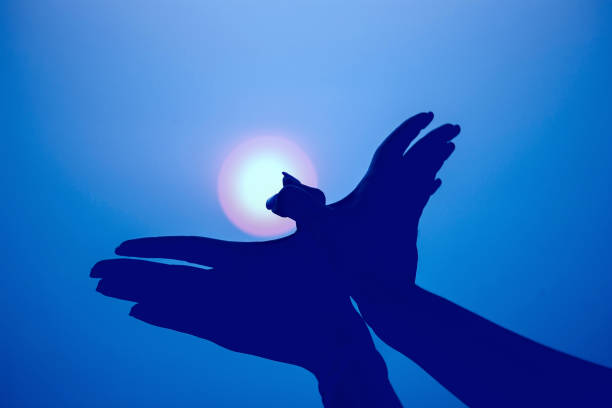 Silhouette of a hand gesture like bird flying on vintage blue sky.