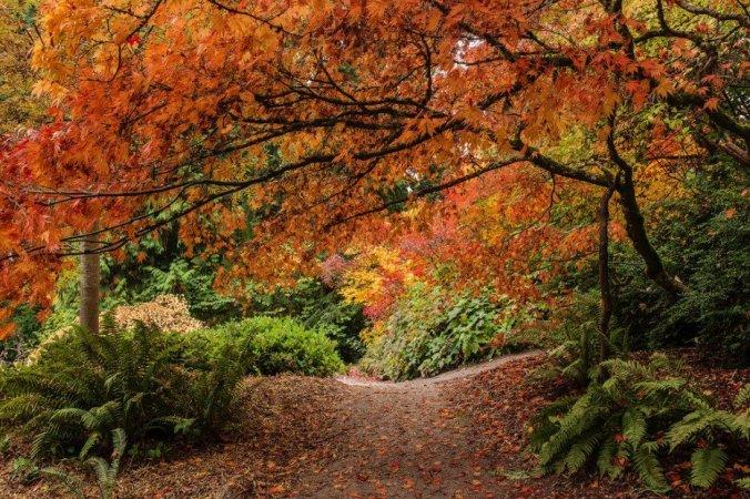 automne 10