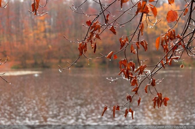 automne 18